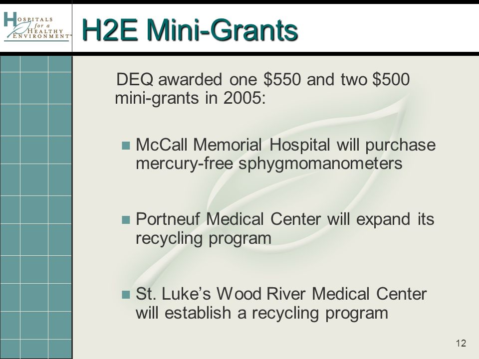 12 H2E Mini-Grants DEQ awarded one $550 and two $500 mini-grants in 2005: McCall Memorial Hospital will purchase mercury-free sphygmomanometers Portneuf Medical Center will expand its recycling program St.