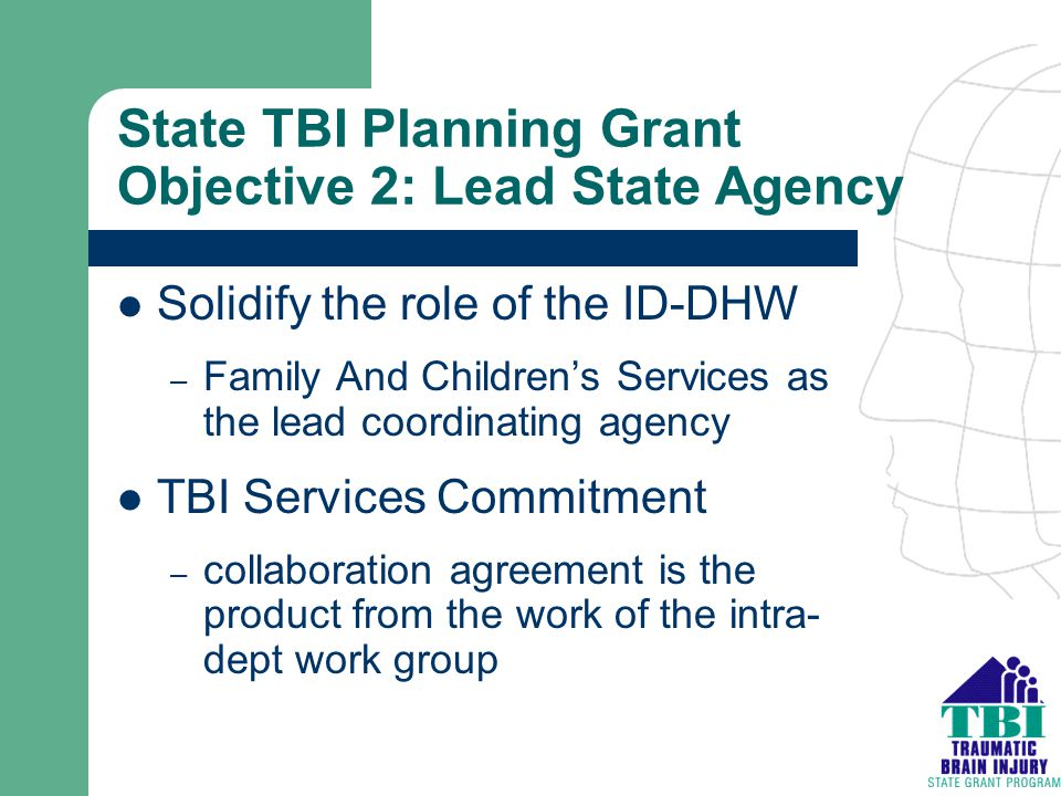 State TBI Planning Grant Objective 2: Lead State Agency Solidify the role of the ID-DHW – Family And Children's Services as the lead coordinating agen