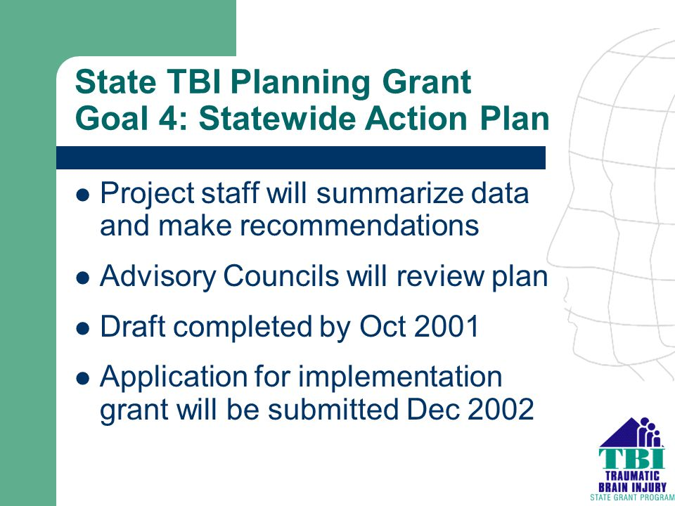 State TBI Planning Grant Goal 4: Statewide Action Plan Project staff will summarize data and make recommendations Advisory Councils will review plan D