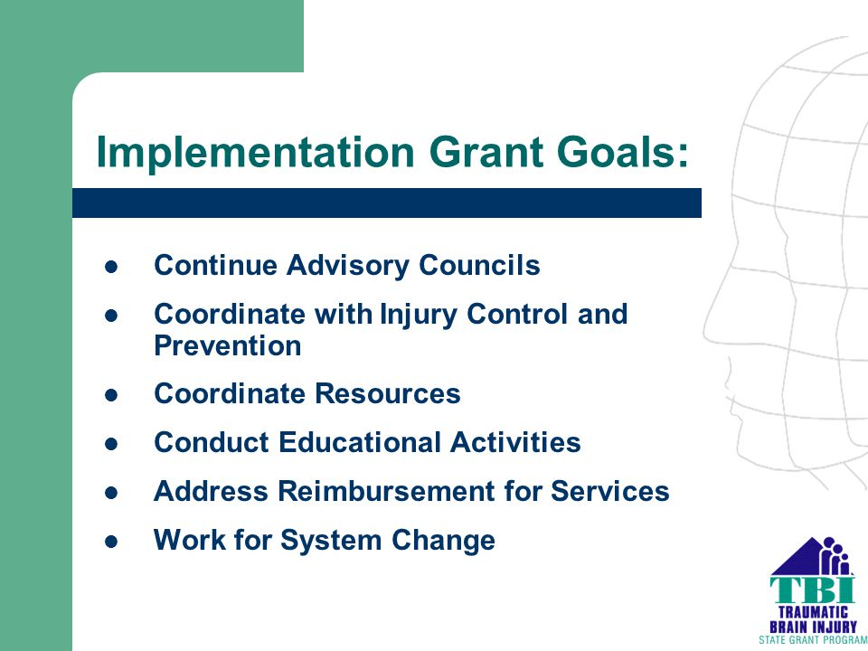 Implementation Grant Goals: Continue Advisory Councils Coordinate with Injury Control and Prevention Coordinate Resources Conduct Educational Activiti