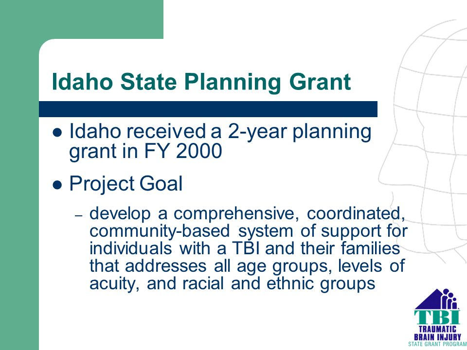 Idaho State Planning Grant Idaho received a 2-year planning grant in FY 2000 Project Goal – develop a comprehensive, coordinated, community-based syst