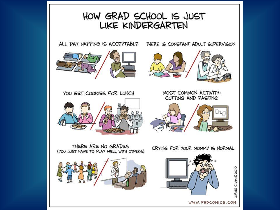 Graduate School = Rollercoaster