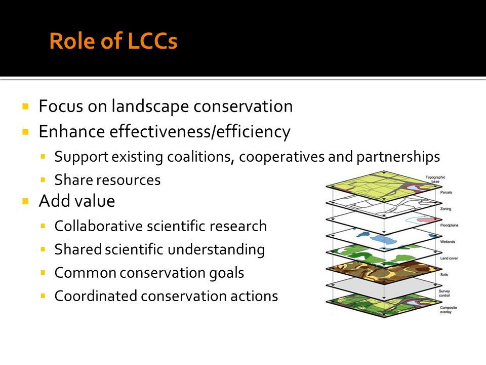  Focus on landscape conservation  Enhance effectiveness/efficiency  Support existing coalitions, cooperatives and partnerships  Share resources  Add value  Collaborative scientific research  Shared scientific understanding  Common conservation goals  Coordinated conservation actions Role of LCCs