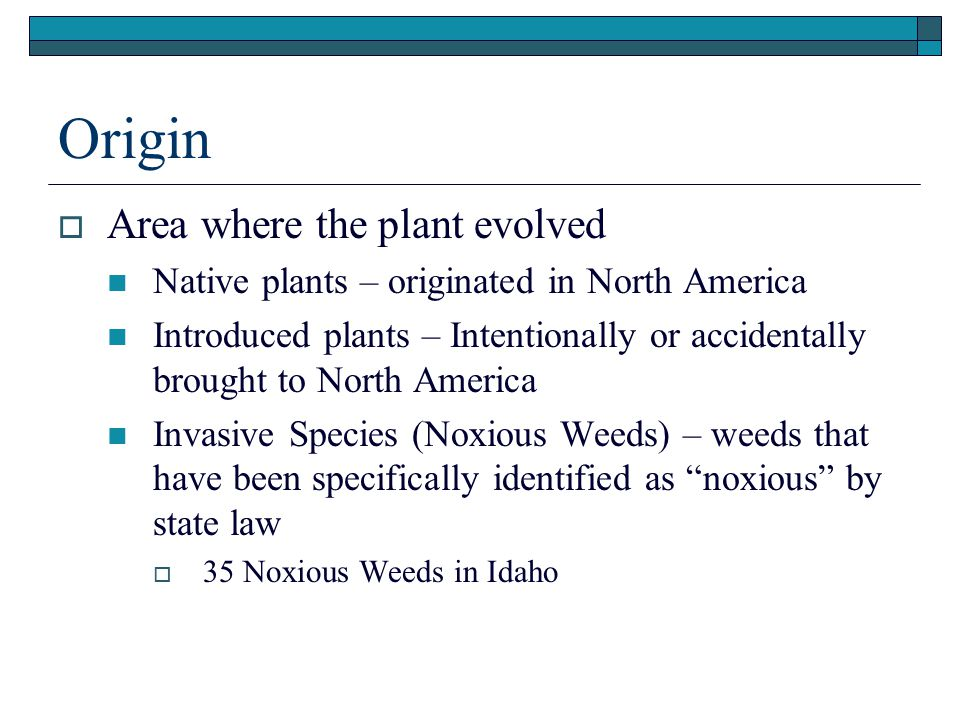 Origin  Area where the plant evolved Native plants – originated in North America Introduced plants – Intentionally or accidentally brought to North America Invasive Species (Noxious Weeds) – weeds that have been specifically identified as noxious by state law  35 Noxious Weeds in Idaho