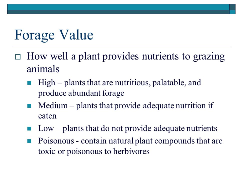 Forage Value  How well a plant provides nutrients to grazing animals High – plants that are nutritious, palatable, and produce abundant forage Medium – plants that provide adequate nutrition if eaten Low – plants that do not provide adequate nutrients Poisonous - contain natural plant compounds that are toxic or poisonous to herbivores
