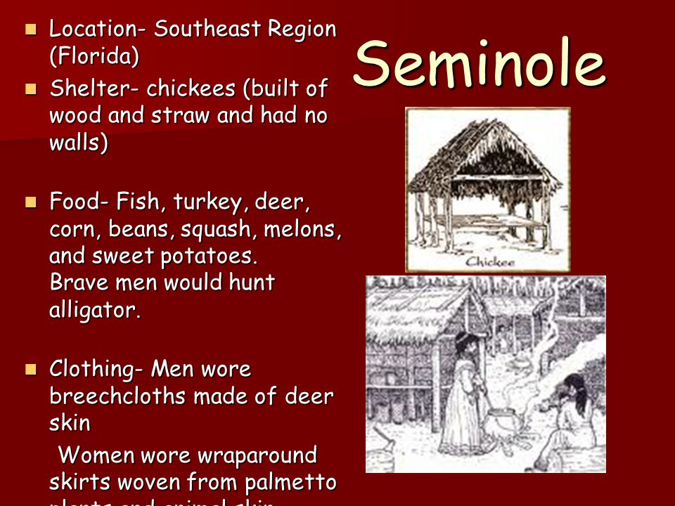 Seminole Location- Southeast Region (Florida) Location- Southeast Region (Florida) Shelter- chickees (built of wood and straw and had no walls) Shelte