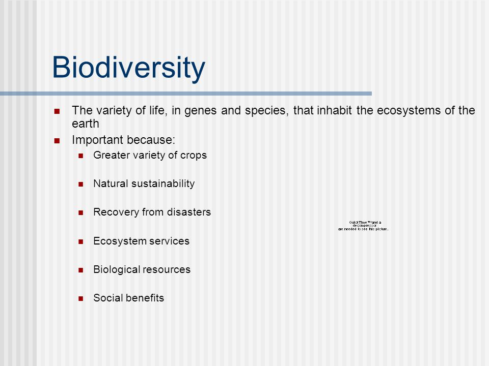 Biodiversity The variety of life, in genes and species, that inhabit the ecosystems of the earth Important because: Greater variety of crops Natural sustainability Recovery from disasters Ecosystem services Biological resources Social benefits