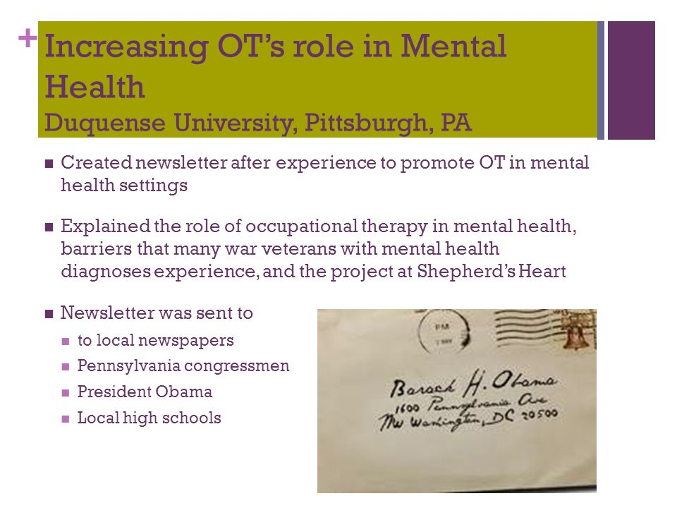 + Increasing OT's role in Mental Health Duquense University, Pittsburgh, PA Created newsletter after experience to promote OT in mental health setting