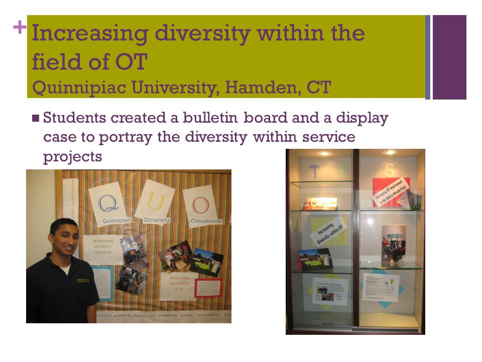 + Increasing diversity within the field of OT Quinnipiac University, Hamden, CT Students created a bulletin board and a display case to portray the di