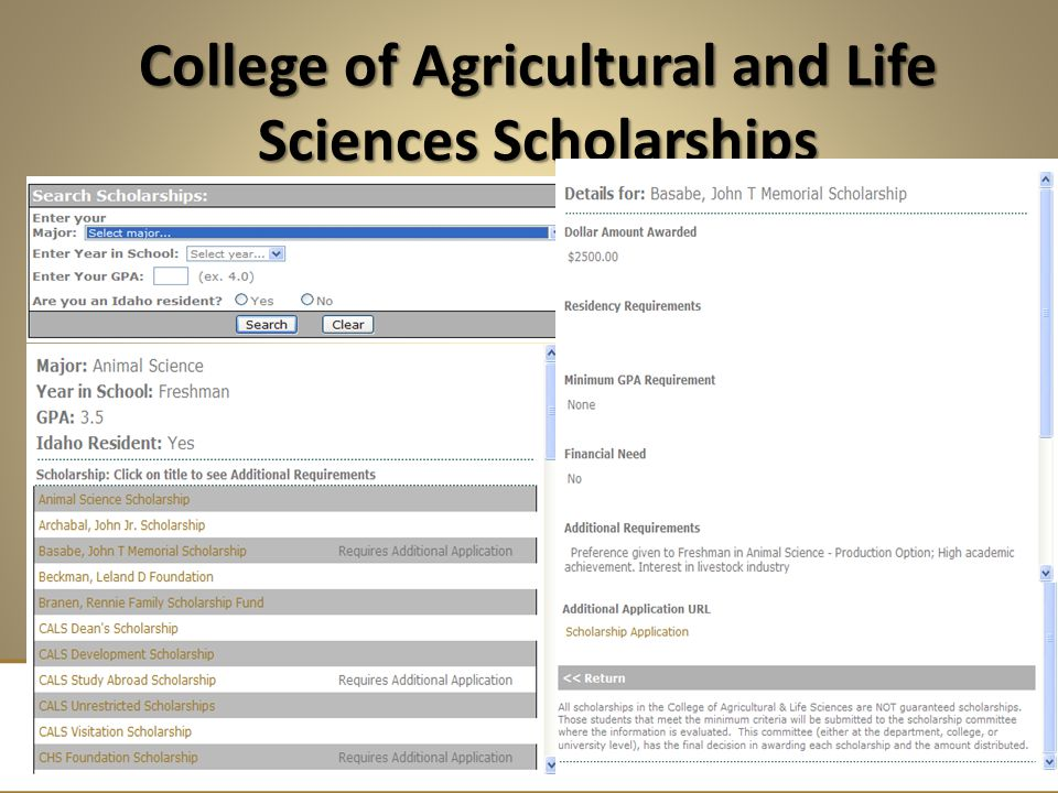 College of Agricultural and Life Sciences Scholarships