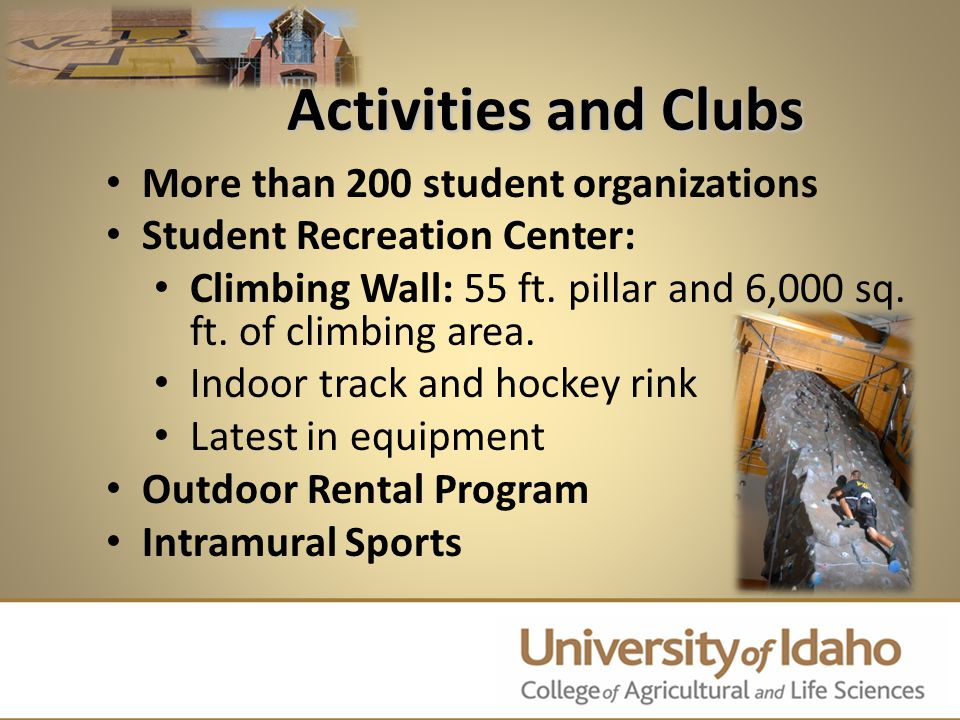 More than 200 student organizations Student Recreation Center: Climbing Wall: 55 ft. pillar and 6,000 sq. ft. of climbing area. Indoor track and hocke