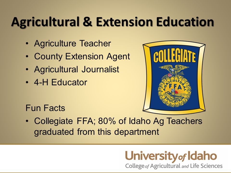 Agricultural Economics & Rural Sociology International Businessperson Crop Buyer Agribusiness Manager Agricultural Loan Officer Commodities Trader Fun Facts Ag Business Club & Knowledge Bowl Team, Craig Marotz led McDonald's Restaurant expansion in China