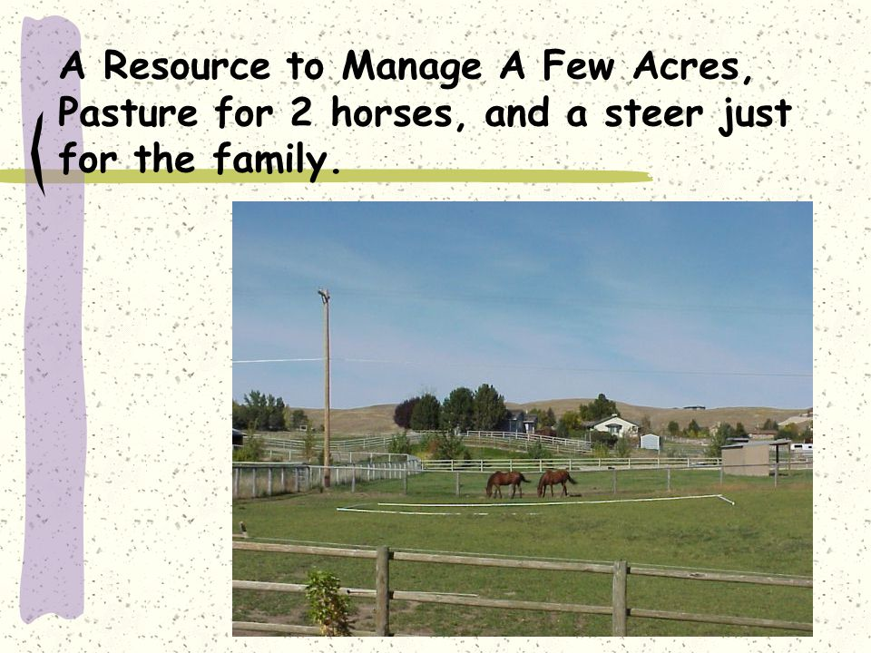 A Resource to Manage A Few Acres, Pasture for 2 horses, and a steer just for the family.