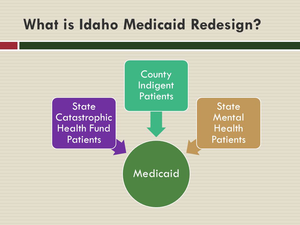 What is Idaho Medicaid Redesign.