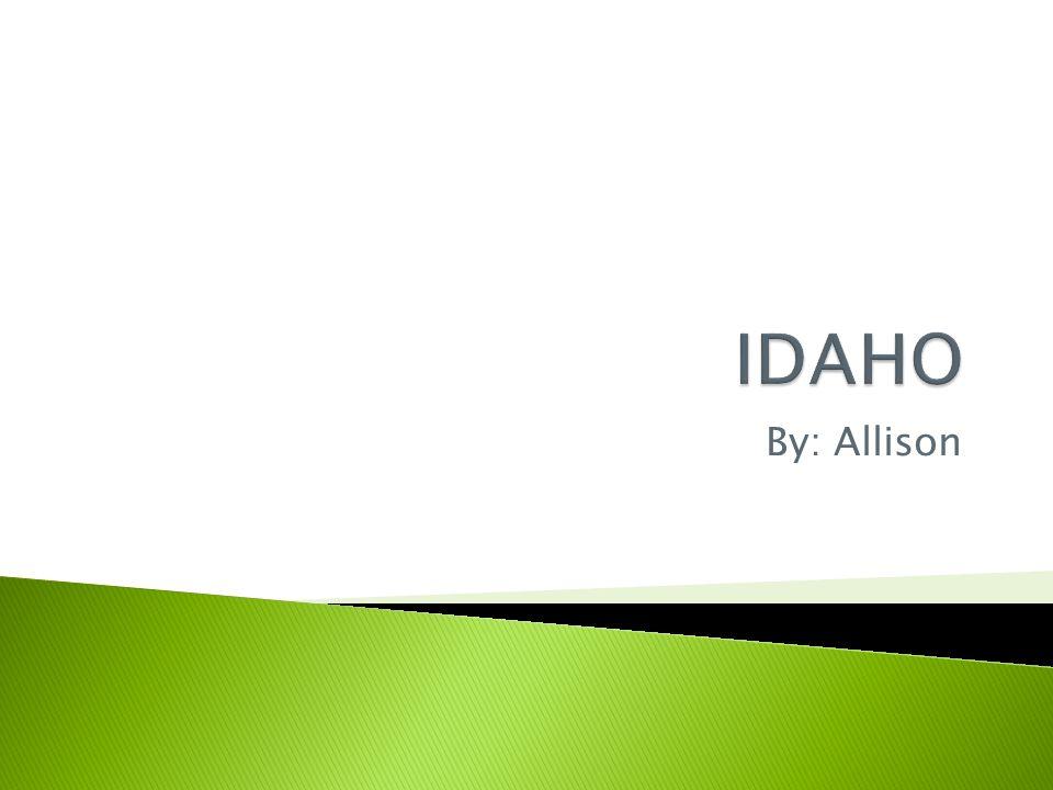  Idaho book  Duckster  Encyclopedia  Fact monster