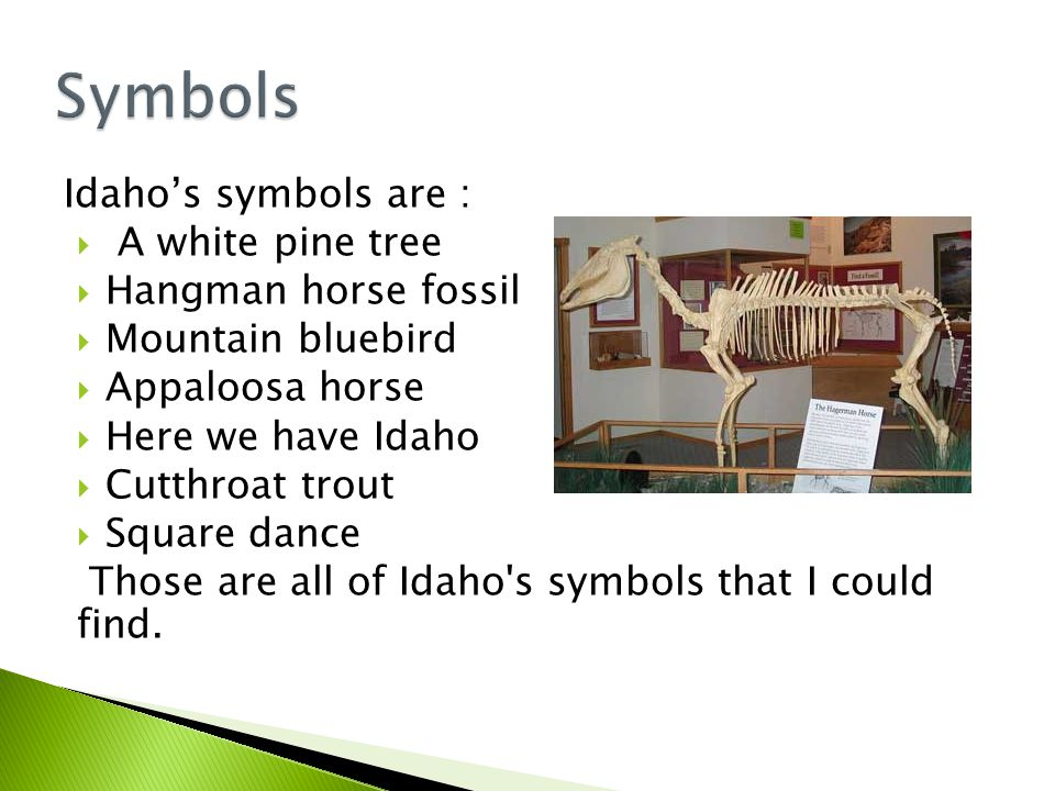 Idaho s nickname is the Gem state because of all of the gems they have.