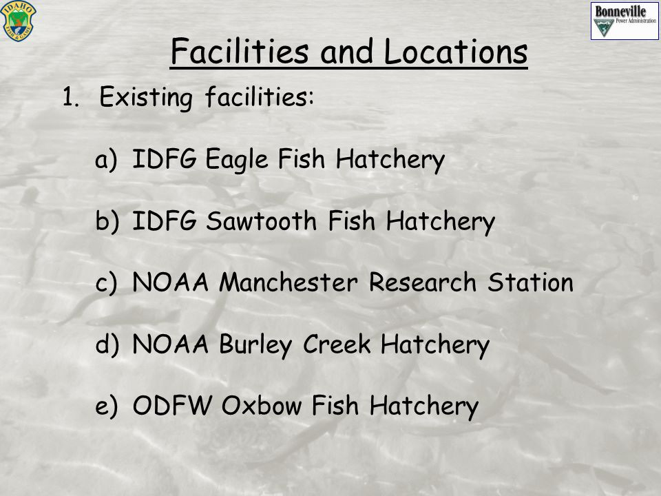 Facilities and Locations 1.Existing facilities: a)IDFG Eagle Fish Hatchery b)IDFG Sawtooth Fish Hatchery c)NOAA Manchester Research Station d)NOAA Bur