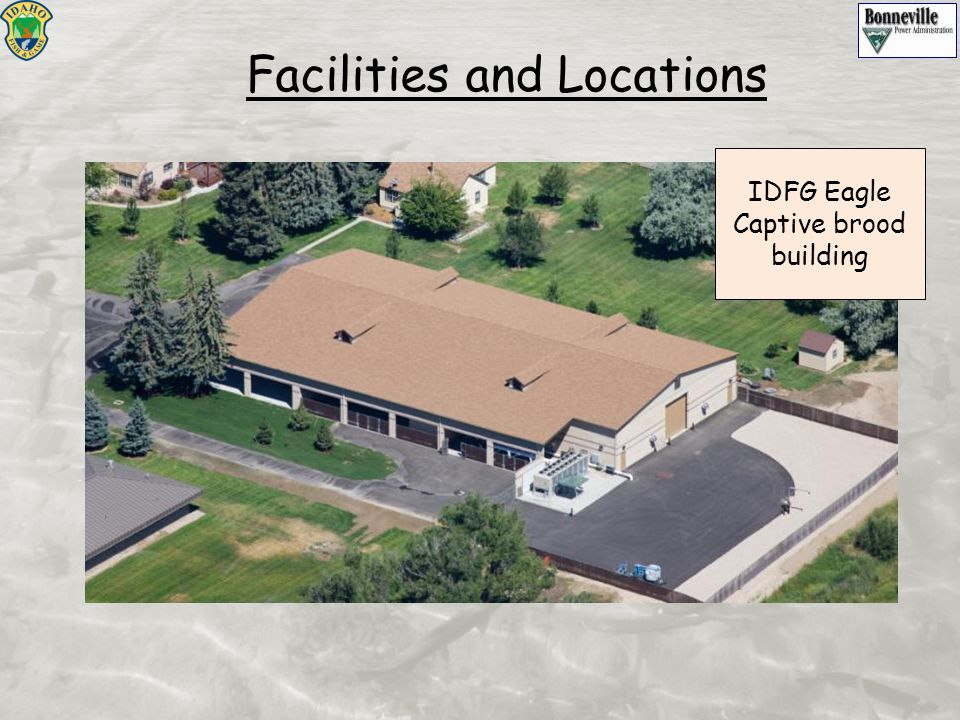 Facilities and Locations IDFG Eagle Captive brood building
