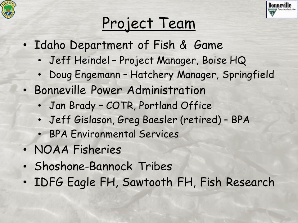 Project Team Idaho Department of Fish & Game Jeff Heindel – Project Manager, Boise HQ Doug Engemann – Hatchery Manager, Springfield Bonneville Power A