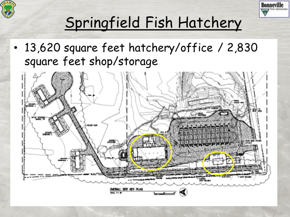 Springfield Fish Hatchery 13,620 square feet hatchery/office / 2,830 square feet shop/storage