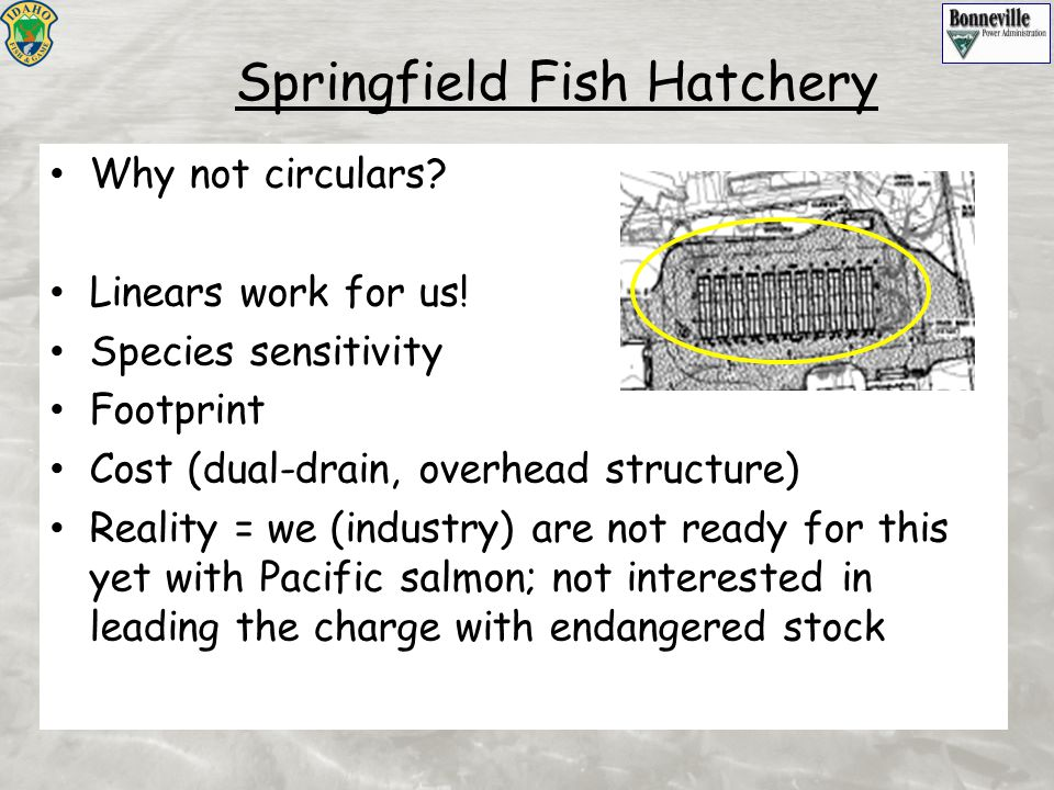 Springfield Fish Hatchery Why not circulars? Linears work for us! Species sensitivity Footprint Cost (dual-drain, overhead structure) Reality = we (in