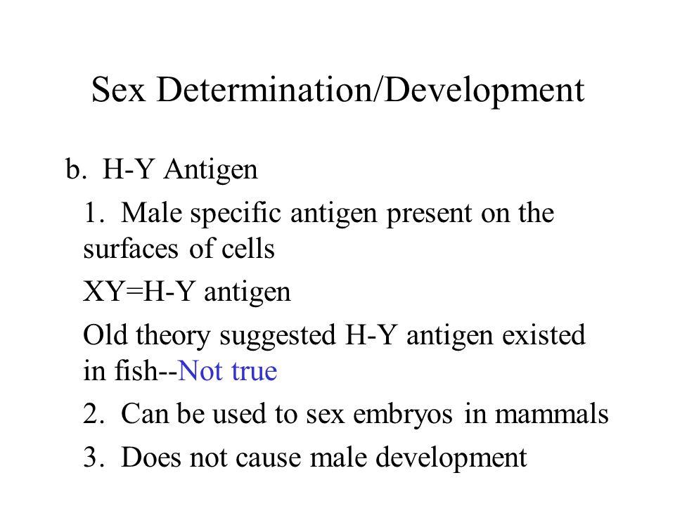 Sex Determination/Development b. H-Y Antigen 1.