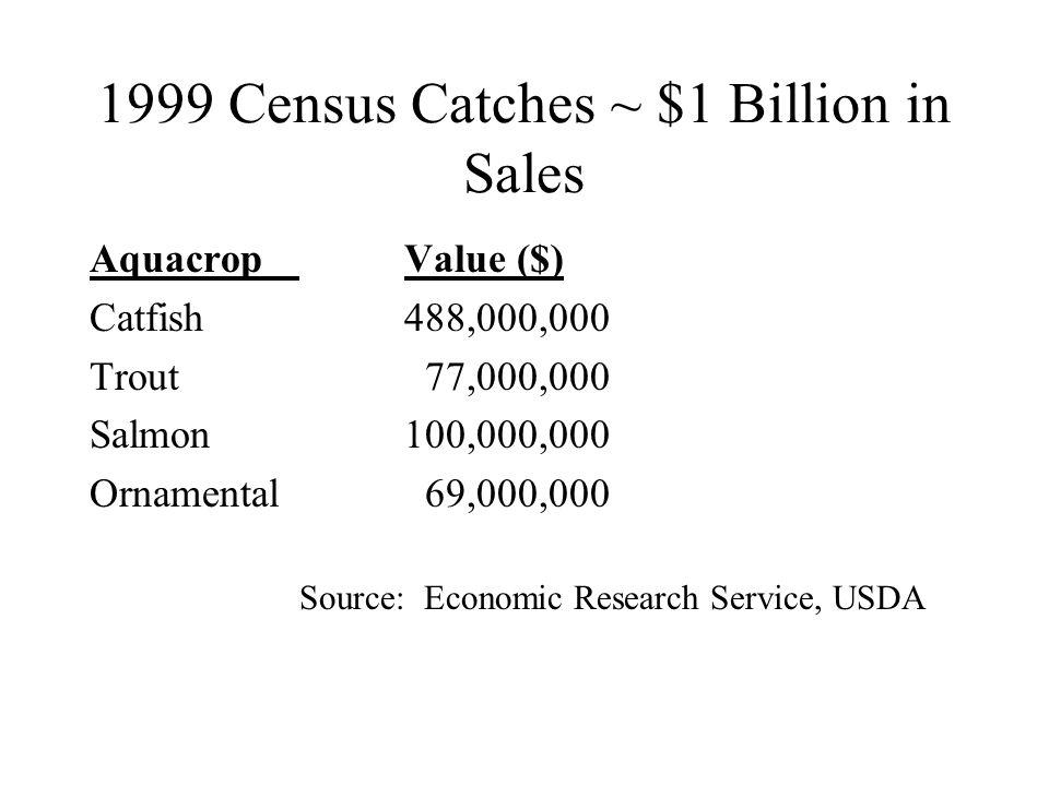 1999 Census Catches ~ $1 Billion in Sales AquacropValue ($) Catfish488,000,000 Trout 77,000,000 Salmon100,000,000 Ornamental 69,000,000 Source: Economic Research Service, USDA
