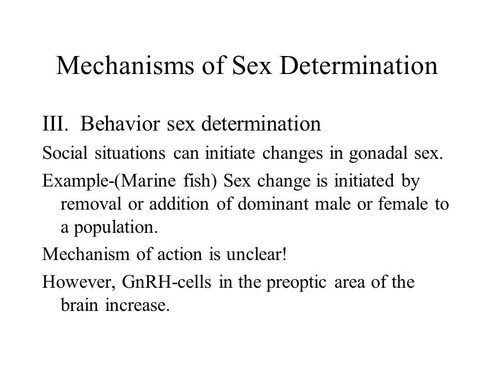 Mechanisms of Sex Determination III.