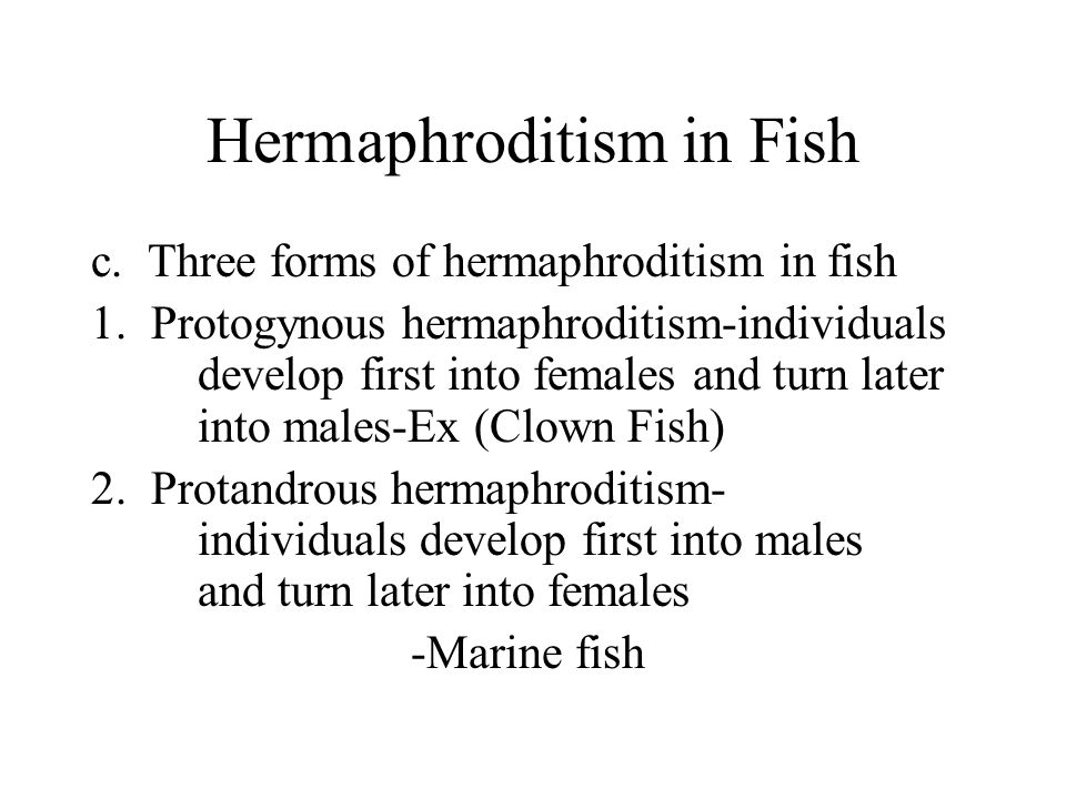 Hermaphroditism in Fish c. Three forms of hermaphroditism in fish 1.
