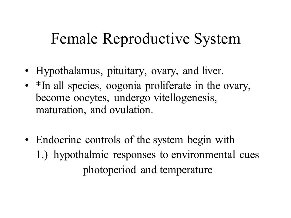 Female Reproductive System Hypothalamus, pituitary, ovary, and liver.