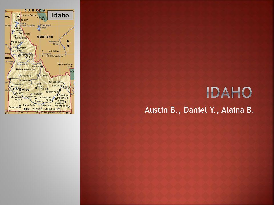 Austin B., Daniel Y., Alaina B.