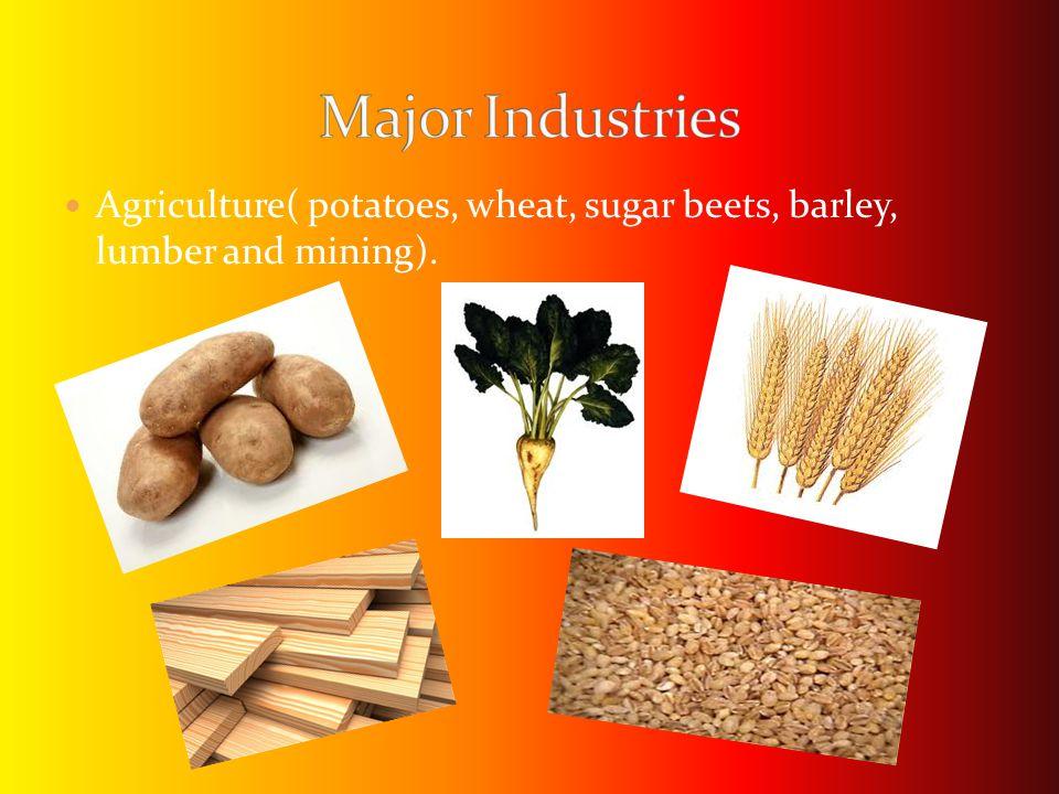 Agriculture( potatoes, wheat, sugar beets, barley, lumber and mining).