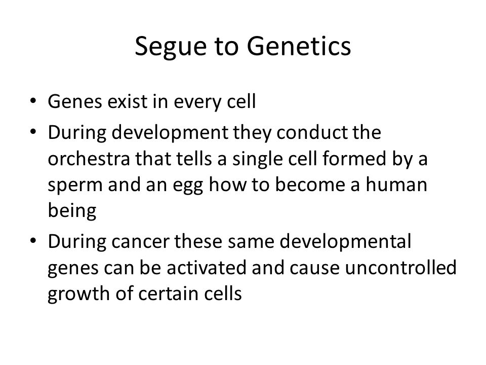 Segue to Genetics Genes exist in every cell During development they conduct the orchestra that tells a single cell formed by a sperm and an egg how to become a human being During cancer these same developmental genes can be activated and cause uncontrolled growth of certain cells