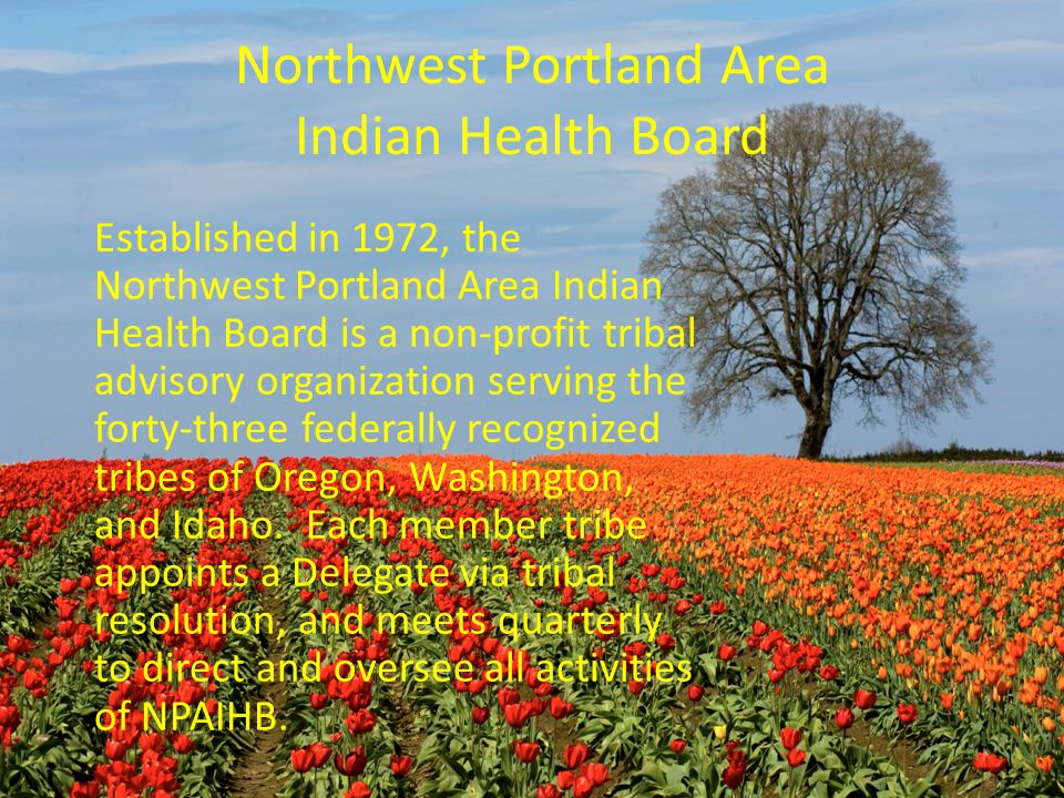 Northwest Portland Area Indian Health Board Established in 1972, the Northwest Portland Area Indian Health Board is a non-profit tribal advisory organization serving the forty-three federally recognized tribes of Oregon, Washington, and Idaho.