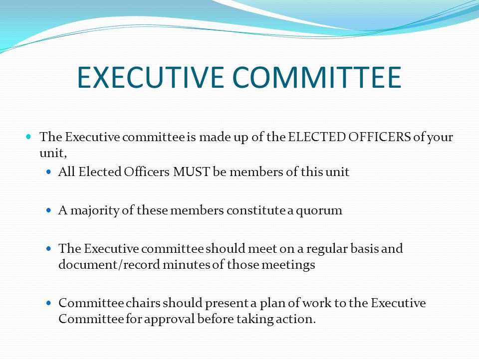 EXECUTIVE COMMITTEE The Executive committee is made up of the ELECTED OFFICERS of your unit, All Elected Officers MUST be members of this unit A majority of these members constitute a quorum The Executive committee should meet on a regular basis and document/record minutes of those meetings Committee chairs should present a plan of work to the Executive Committee for approval before taking action.
