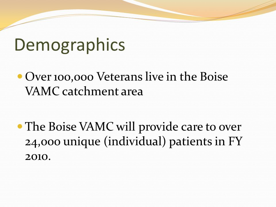 Demographics Over 100,000 Veterans live in the Boise VAMC catchment area The Boise VAMC will provide care to over 24,000 unique (individual) patients in FY 2010.