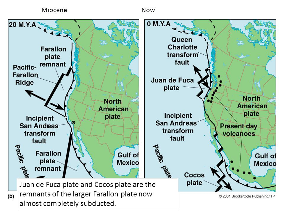 Miocene Now Juan de Fuca plate and Cocos plate are the remnants of the larger Farallon plate now almost completely subducted.
