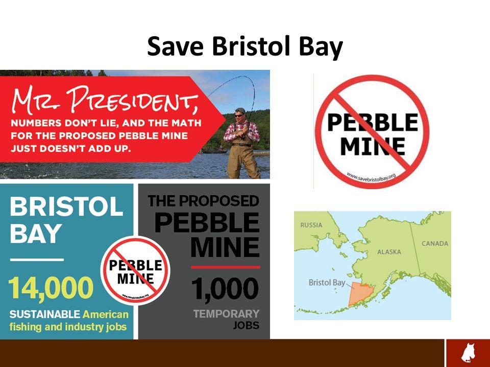 Save Bristol Bay – Rally the Crowd