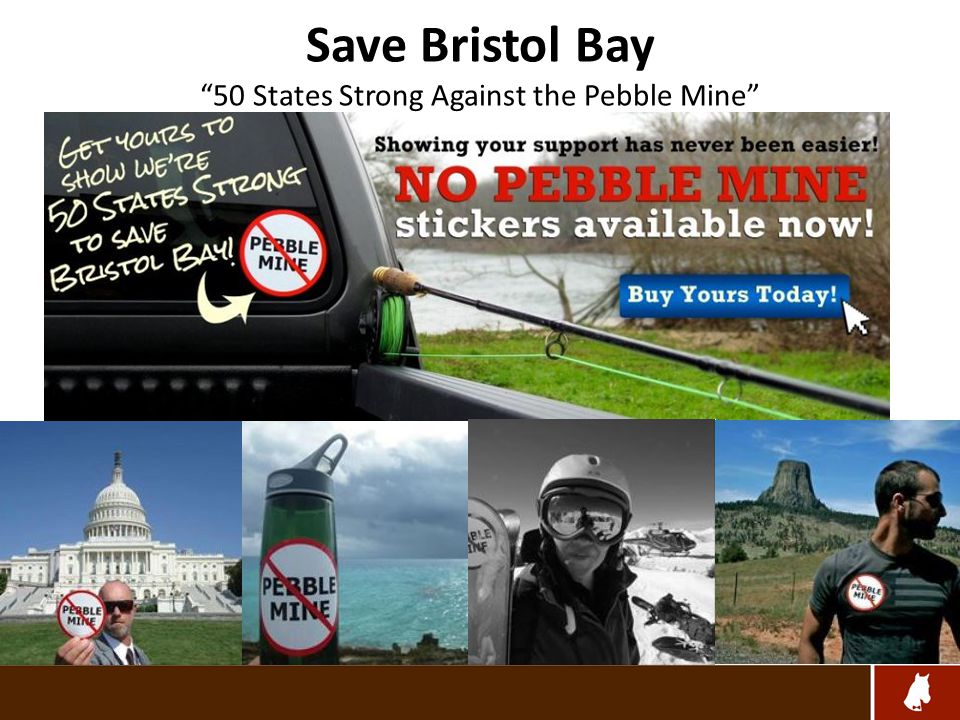 Save Bristol Bay 50 States Strong Against the Pebble Mine