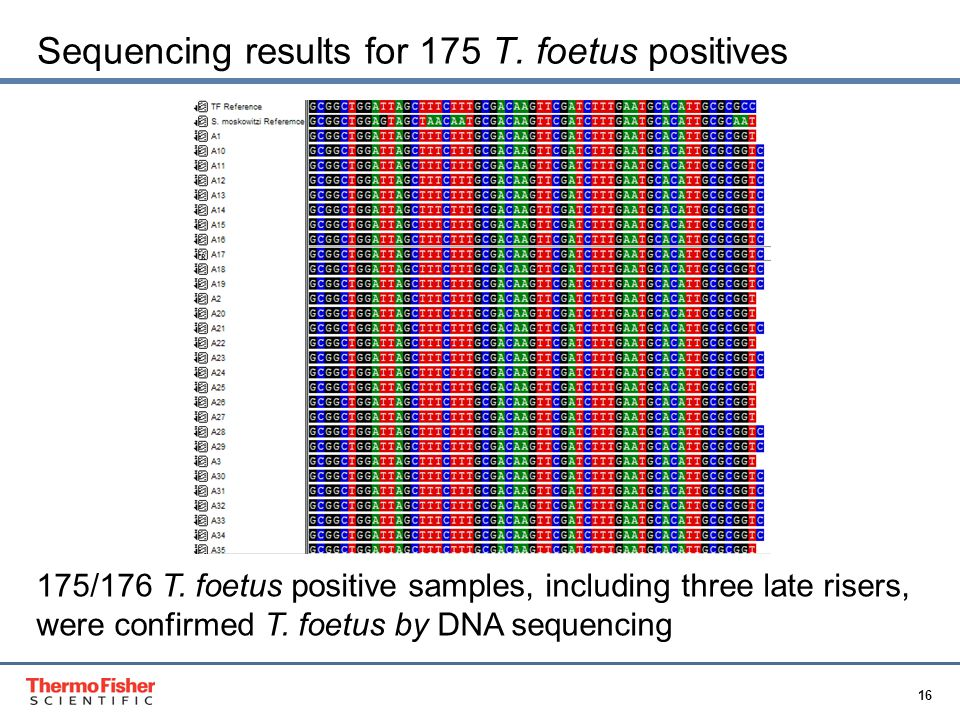 16 Proprietary & Confidential Sequencing results for 175 T.