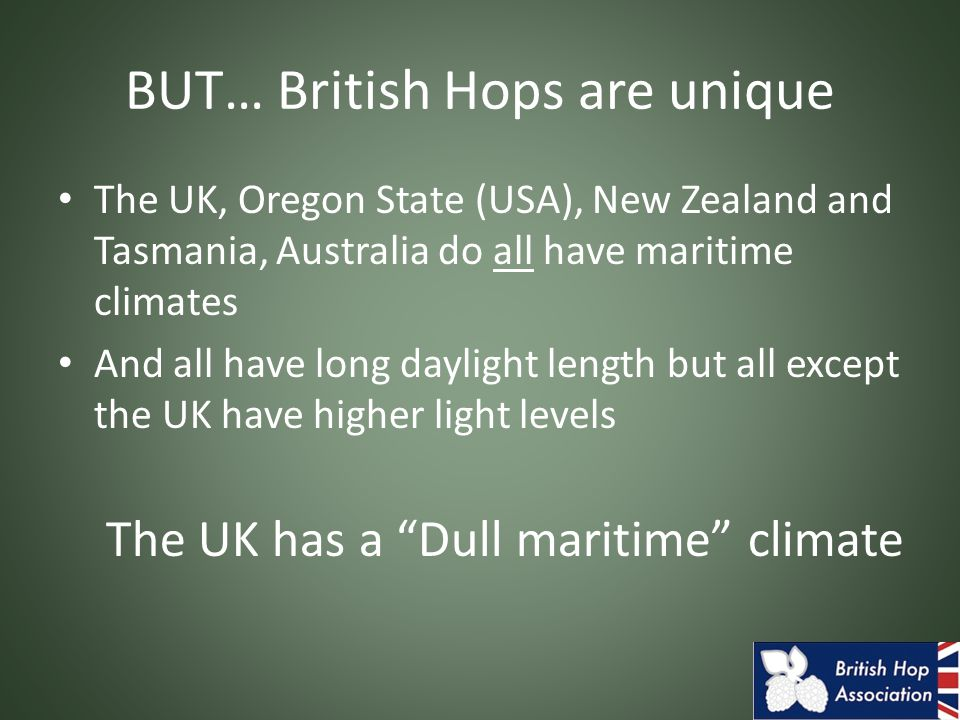 BUT… British Hops are unique The UK, Oregon State (USA), New Zealand and Tasmania, Australia do all have maritime climates And all have long daylight length but all except the UK have higher light levels The UK has a Dull maritime climate