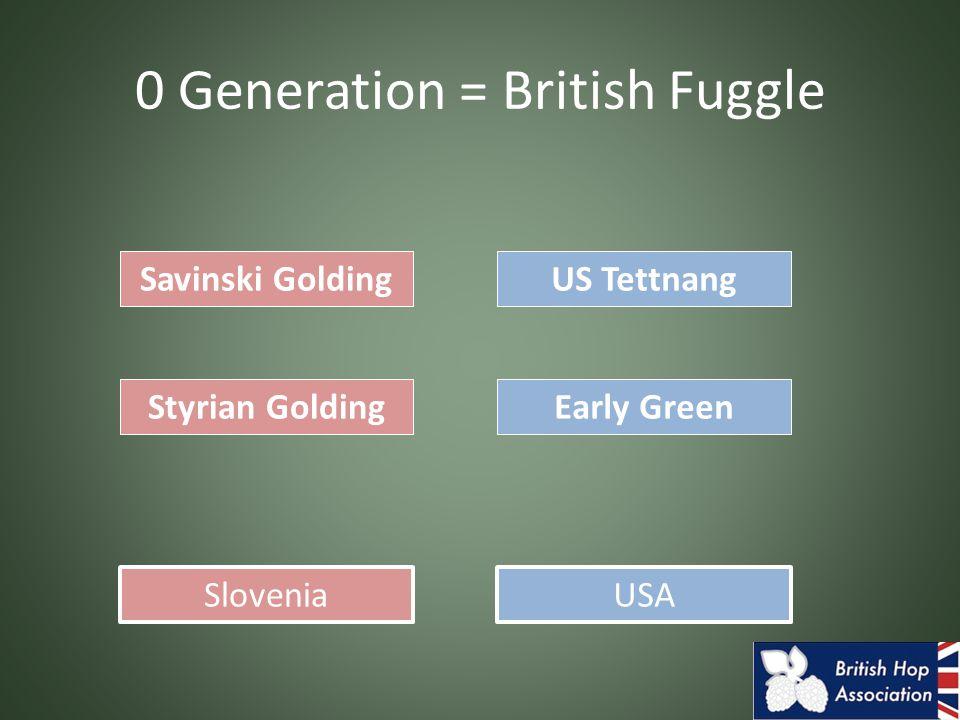 0 Generation = British Fuggle Savinski Golding Styrian GoldingEarly Green US Tettnang SloveniaUSA