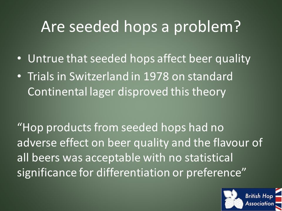 Are seeded hops a problem.