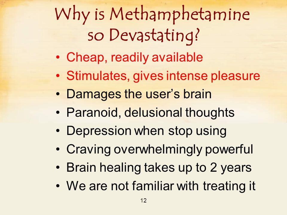 12 Why is Methamphetamine so Devastating.