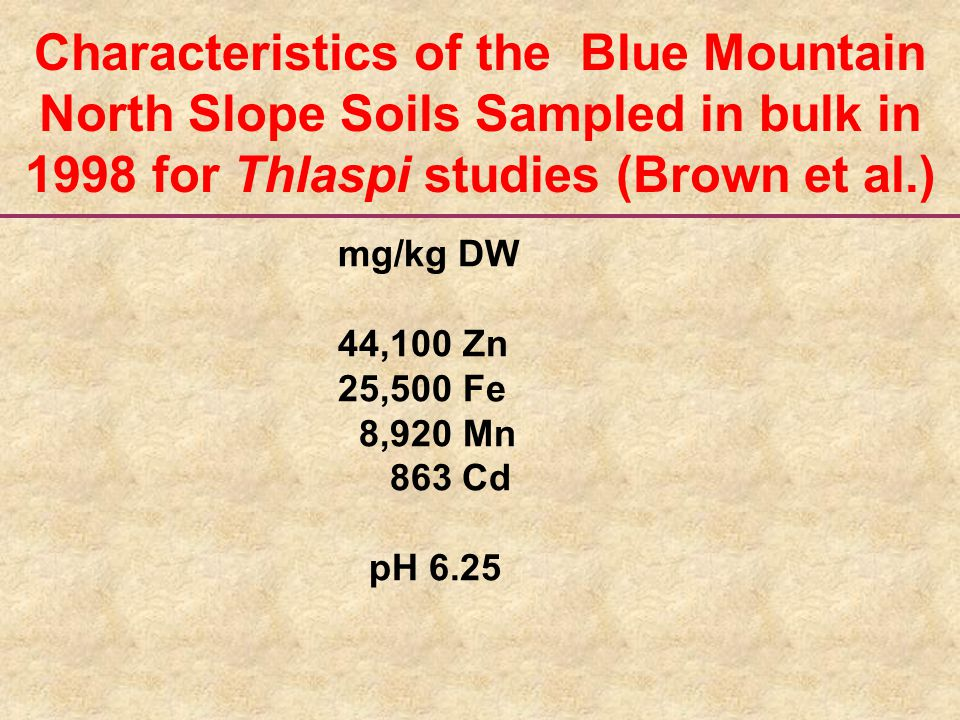 mg/kg DW 44,100 Zn 25,500 Fe 8,920 Mn 863 Cd pH 6.25 Characteristics of the Blue Mountain North Slope Soils Sampled in bulk in 1998 for Thlaspi studies (Brown et al.)