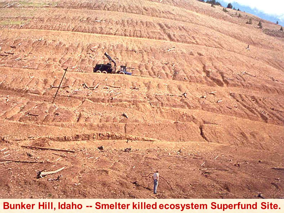 Bunker Hill, Idaho -- Smelter killed ecosystem Superfund Site.