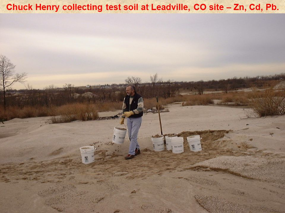 Chuck Henry collecting test soil at Leadville, CO site – Zn, Cd, Pb.