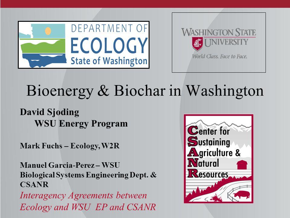 Bioenergy & Biochar in Washington David Sjoding WSU Energy Program Mark Fuchs – Ecology, W2R Manuel Garcia-Perez – WSU Biological Systems Engineering