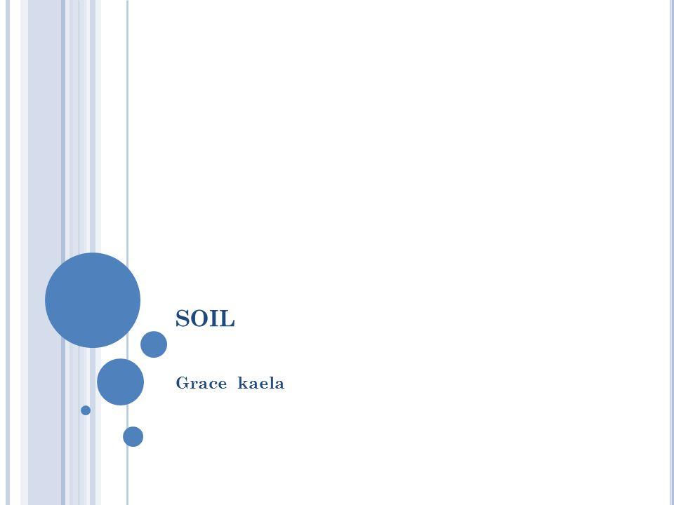 SOIL Grace kaela