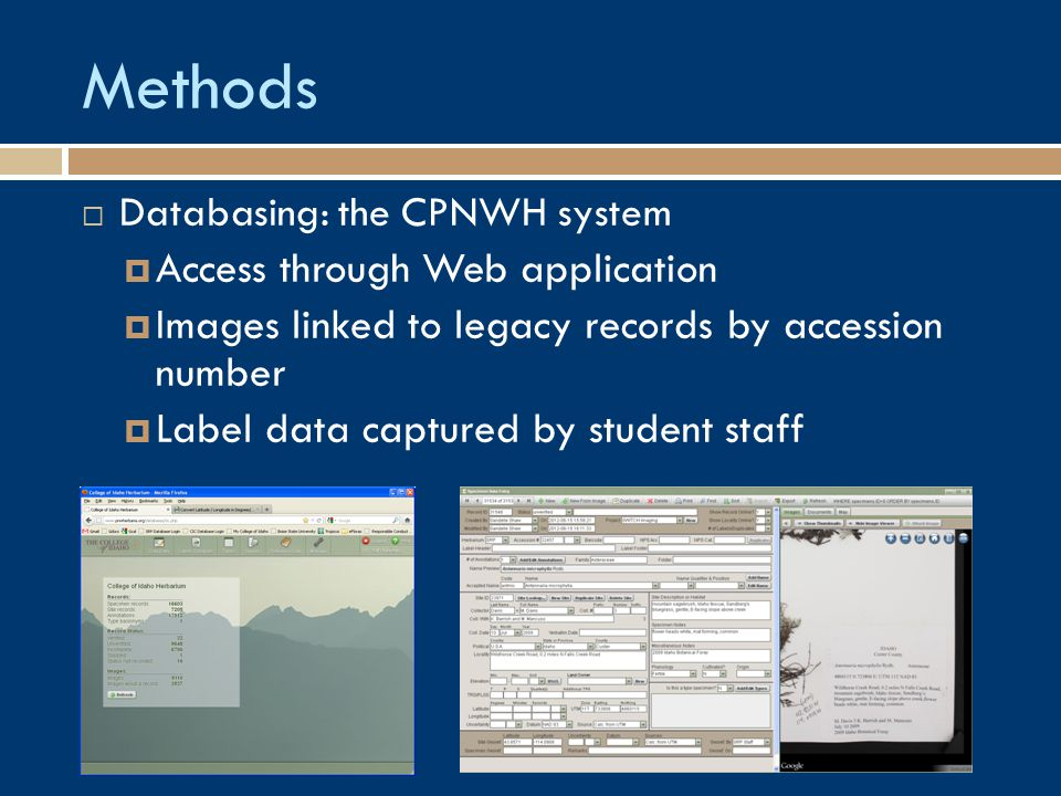 Methods  Databasing: the CPNWH system  Access through Web application  Images linked to legacy records by accession number  Label data captured by